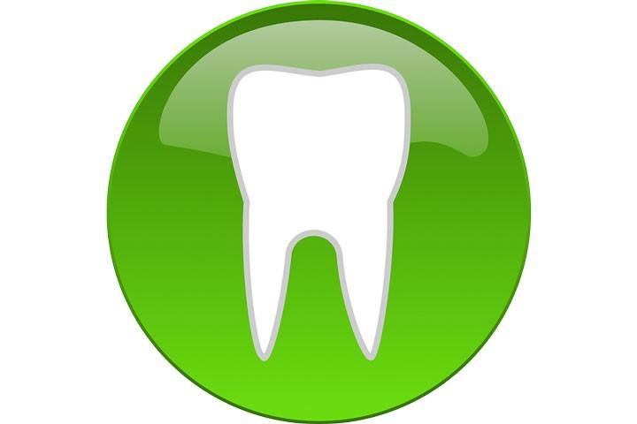 18 самых интересных фактов о зубах